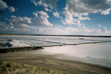 Kalahari Salt Pan